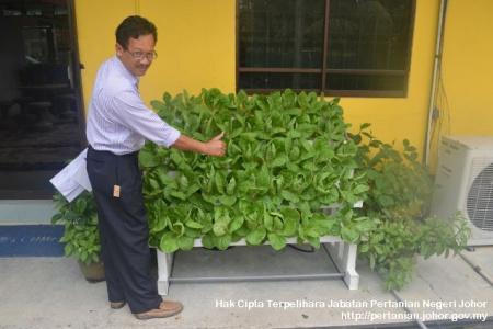 Pertanian Bandar Kulai