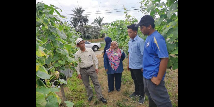 Lawatan Pengarah Pertanian Negeri Johor ke Projek Tanaman Sayuran, Pontian