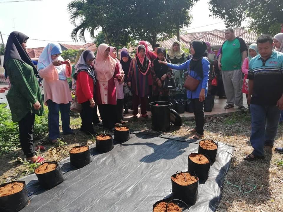 Program Botani Desa tarik minat bertani