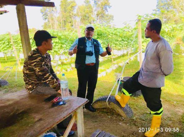 Lawatan pemantauan dan permohonan program agroprenuer muda