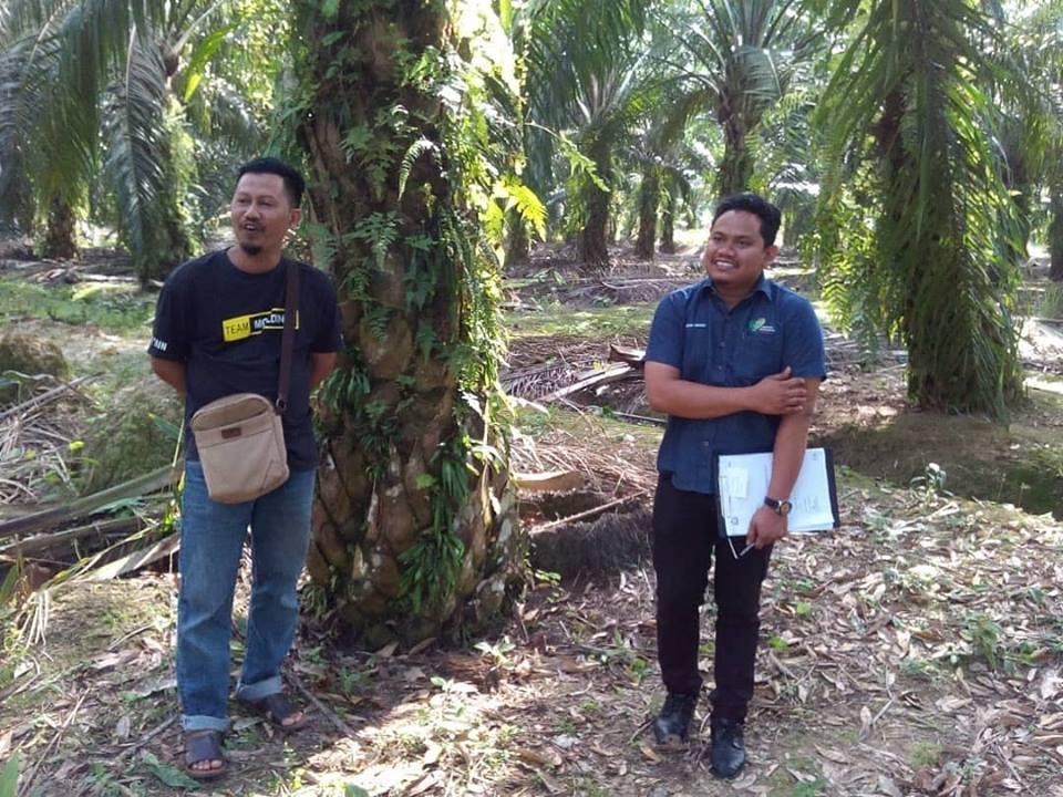 Program Regulotori Daerah Pontian