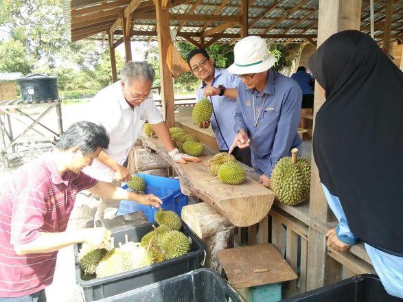 Lawatan Pengarah Pertanian Negeri Johor ke Daerah Kluang