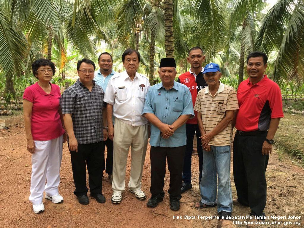 Projek Tanaman Kelapa Matag Daerah Tangkak
