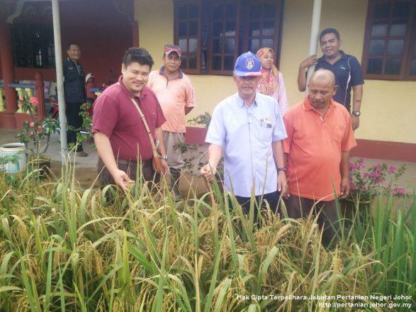 Lawatan Pegawai Pertanian Daerah ke Mukim Kundang