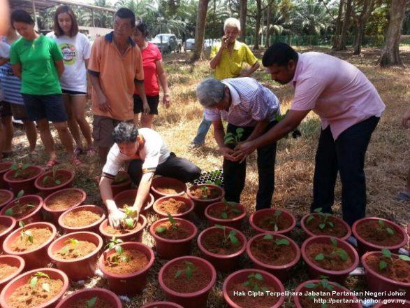 Petani ikuti kursus tanaman secara nutripot