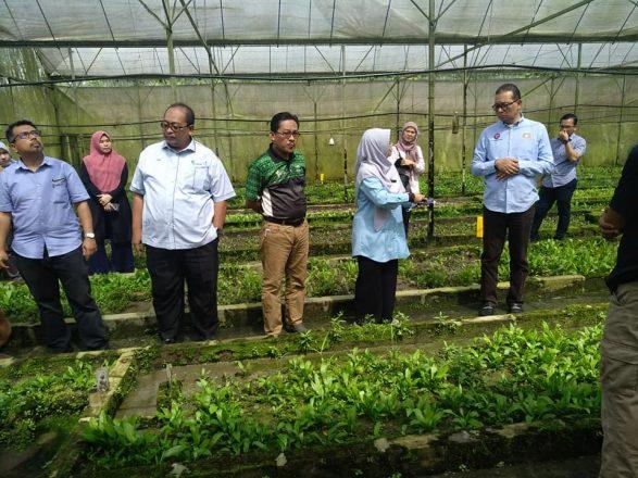 Lawatan Pengerusi Jawatan Kuasa Pertanian, Industri Asas Tani Dan Kemajuan Luar Bandar ke Kota Tinggi
