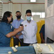 Ketua Pengarah Pertanian Melawat Projek Industri Asas Tani